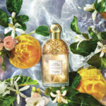 Guerlain Aqua Allegoria Herba Fresca parfum review